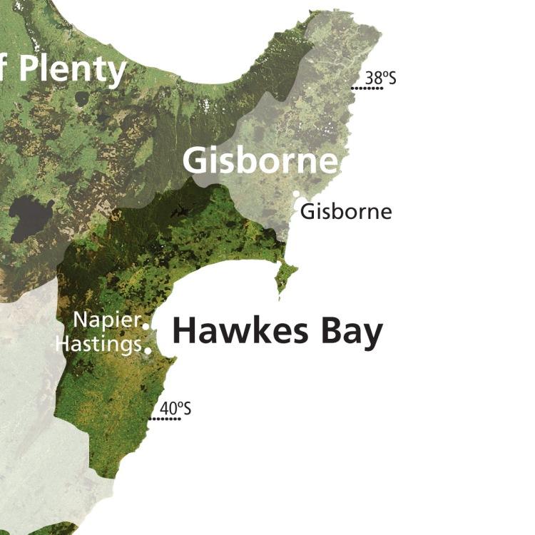 NZ Wine WRV_077_HAWKES BAY