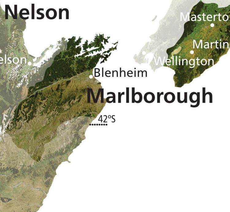 NZ Wine WRV_098_MARLBOROUGH