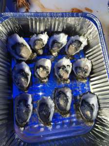 oysters pre-smoke