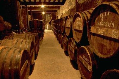Delamain Cognac - barrels