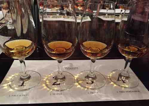 Delamain Cognac - tasting line-up
